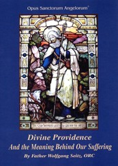 Divine Providence and the Meaning Behind our Suffering
