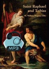 St. Raphael and Tobias - 1 Conference - MP3